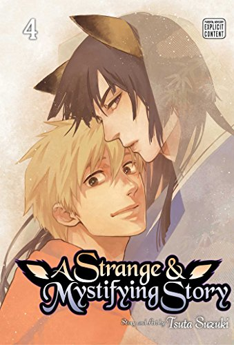 Strange and Mystifying Story, Vol. 4 (A Strange and Mystifying Story, Band 4) von Viz LLC