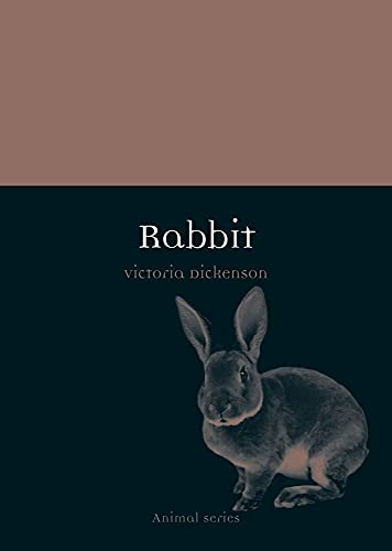 Rabbit (Animal)