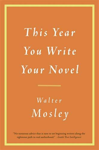 This Year You Write Your Novel von Little Brown and Company