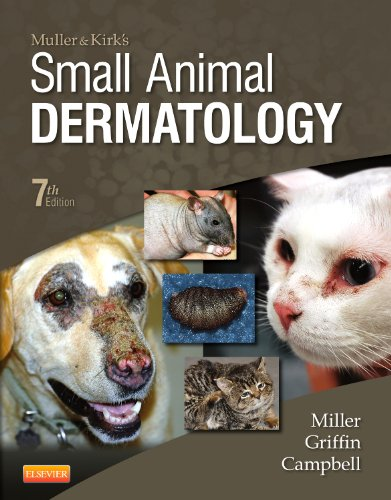 Muller and Kirk's Small Animal Dermatology von Saunders