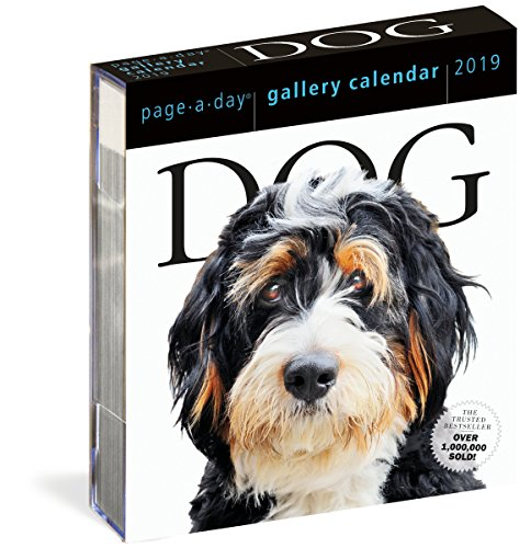 2019 Dog Gallery Page-A-Day Gallery Calendar von Workman Publishing
