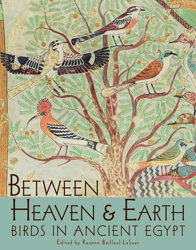 BETWEEN HEAVEN AND EARTH PB: Birds in Ancient Egypt (Oriental Institute Museum Publications, Band 35)