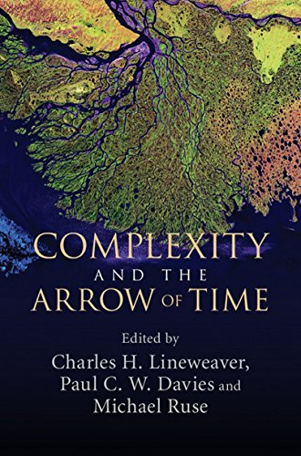 Complexity and the Arrow of Time von Cambridge University Press