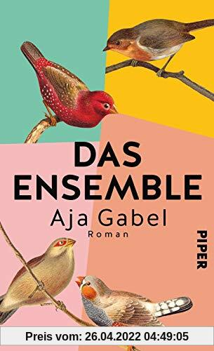 Das Ensemble: Roman