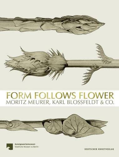 Form Follows Flower: Moritz Meurer, Karl Blossfeldt & Co. von Deutscher Kunstverlag