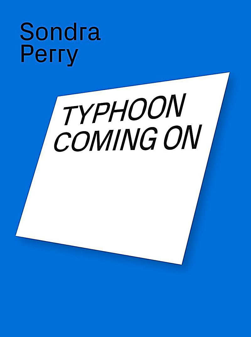 Sondra Perry. Typhoon coming on