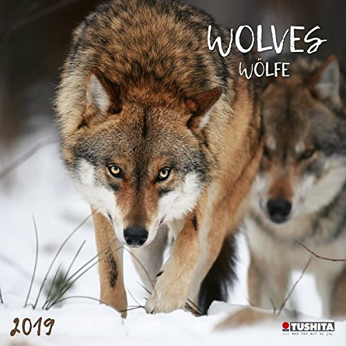 Wolves 2019: Kalender 2019 (Wonderful World) von Tushita